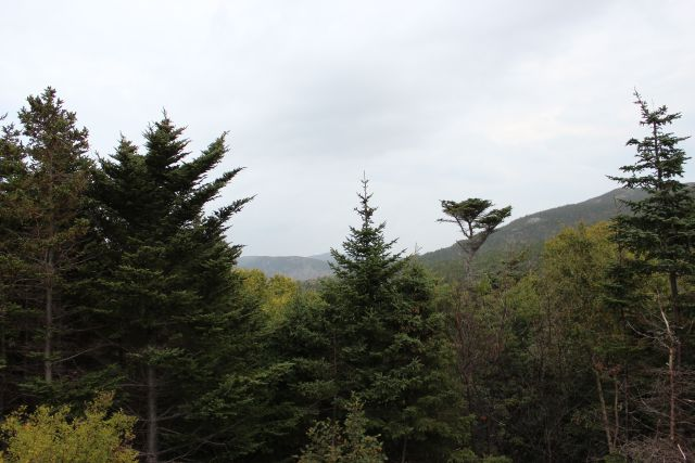 239-241 Beachy Cove Rd-Lot 2-Brook & Hill as your backdrop!